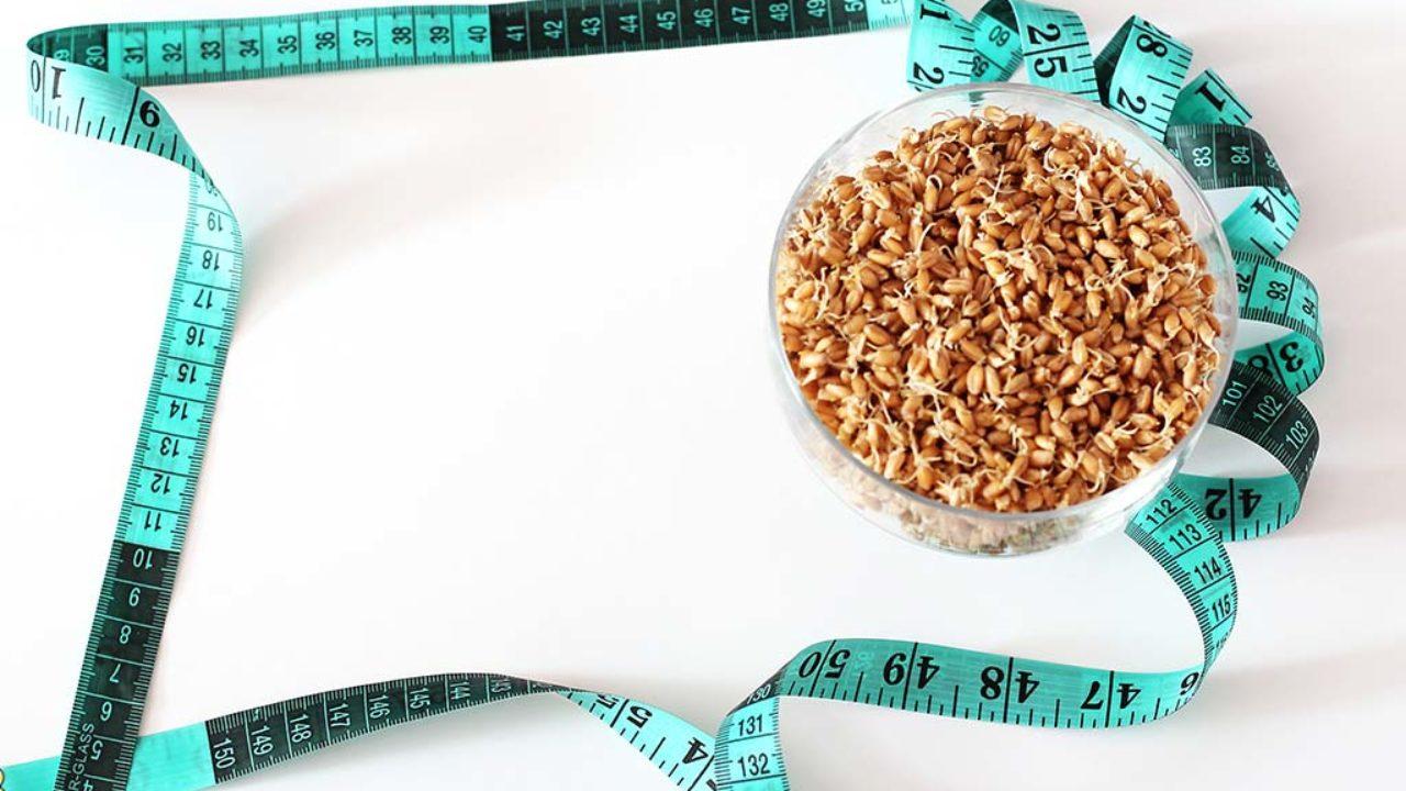 nourriture que vous devriez manger en essayant de perdre du poids